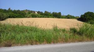 Terreno Agricolo in Vendita a San Benedetto del Tronto #4
