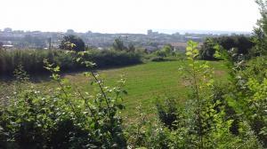 Terreno Agricolo in Vendita a San Benedetto del Tronto #5